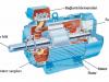 üç fazlı asemkron motorun parçaları