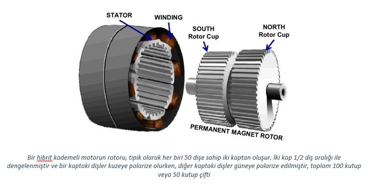 5 fazlı step motor yapısı