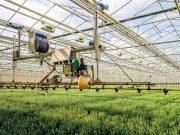 tarımda robotik sulama